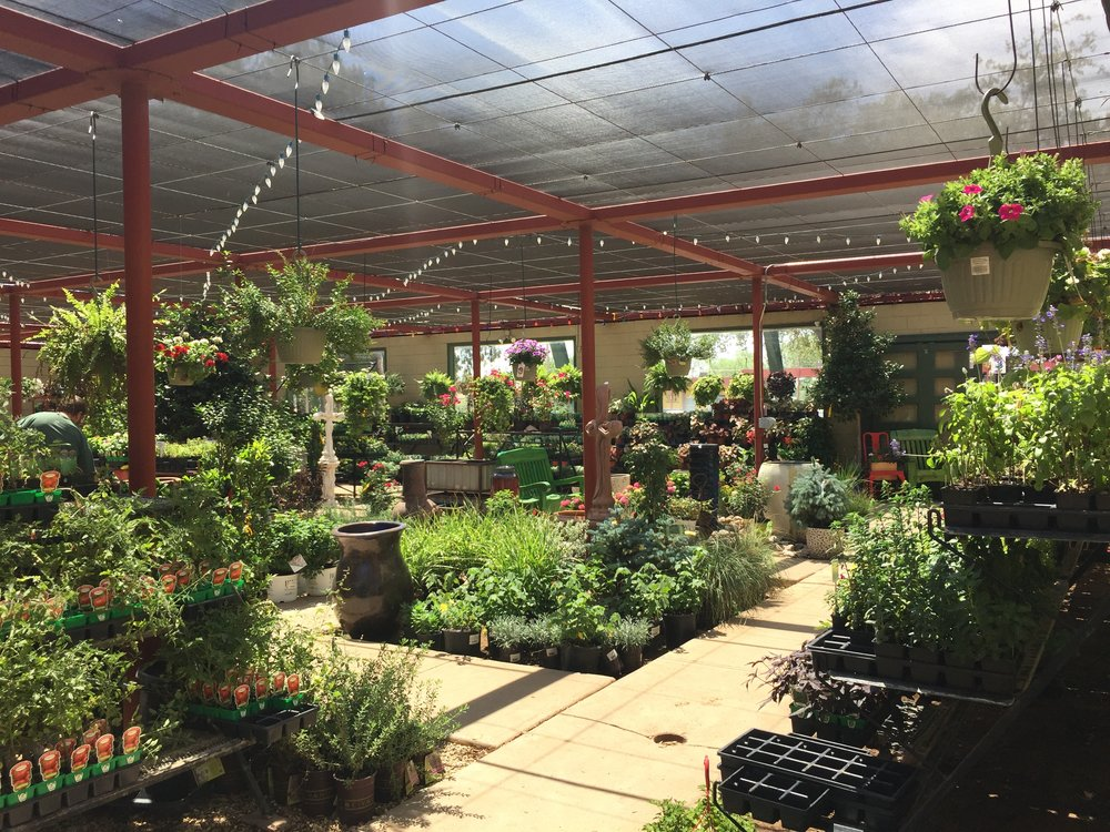 Our reccomnedation - The Nursery is where you can literally come and smell the roses. Their highly educated and informative staff are eager to help assist you in your purchases. Whether you are looking to do a small DIY project or you are wanting to meet with one of their Landscape Architects for a large construction project the nursery is the place to come.
