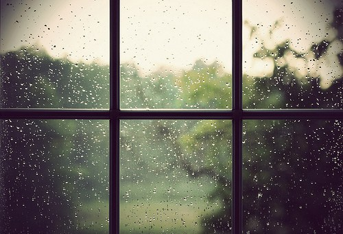 rainydaysphotographyrainwindowbrownglass-5d14f2cd9e5731851de60708810617e4_h_large.jpg