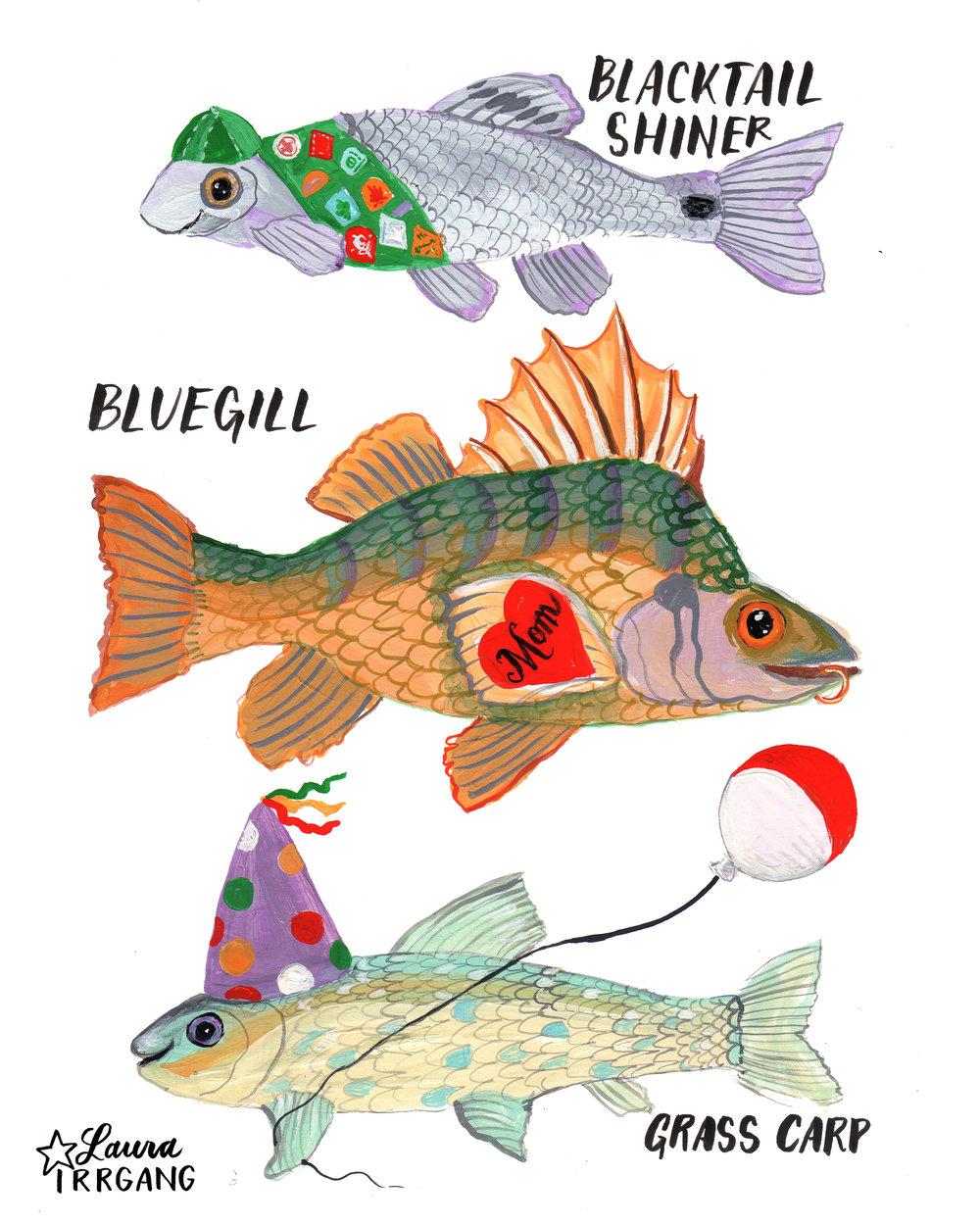 YMCA fish.jpg