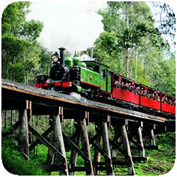 Tour 322 Morning Puffing Billy.png