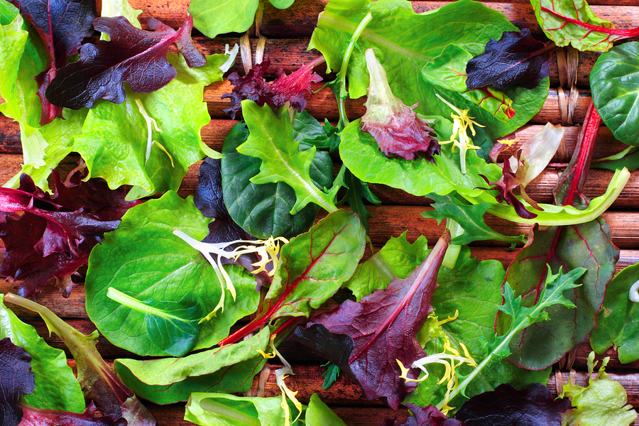 bitter-greens.jpg