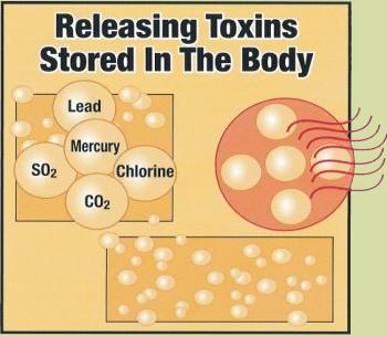 releasetoxins.jpg