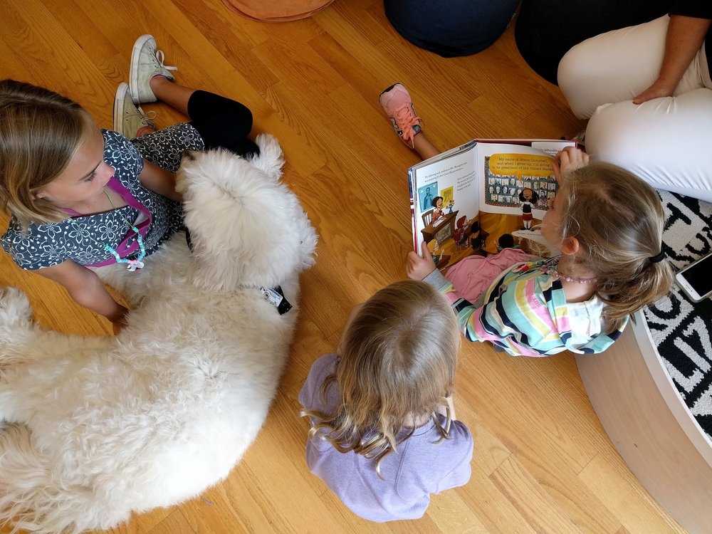Dudley our reading therapy dog friend.jpg