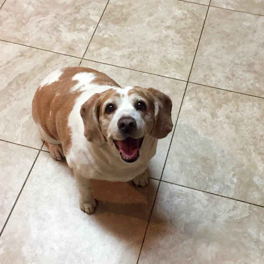 Photo of Mabel