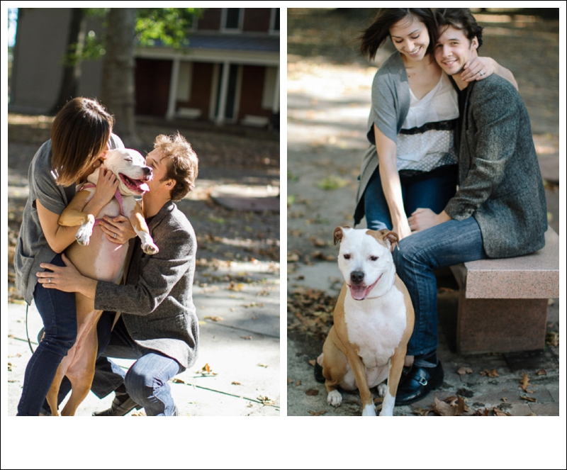 engagement pet photography philly