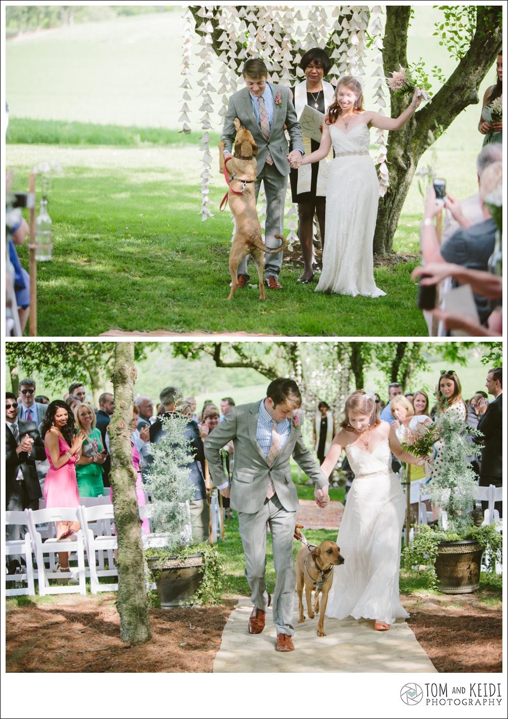 best wedding ceremony photos with dog