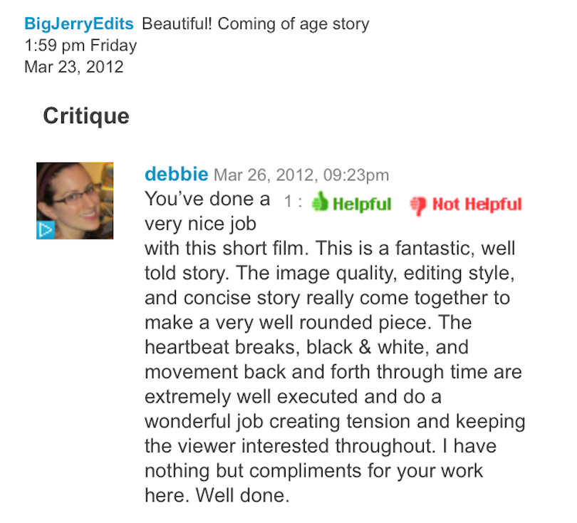 "A critique from the ""New York Video School"""