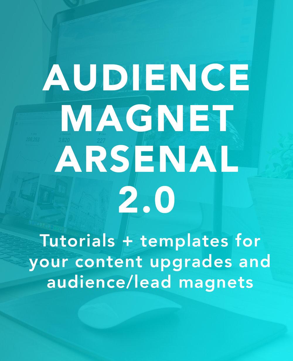 Audience-Magnet-Arsenal-Thumbnail.jpg