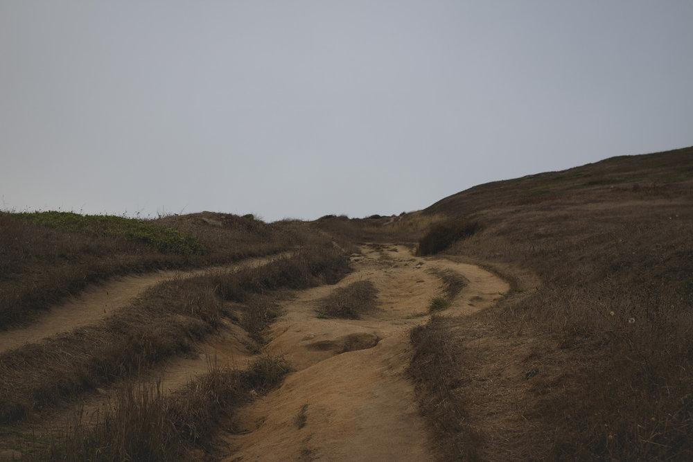 brown-grass-sky-point-reyes.jpg