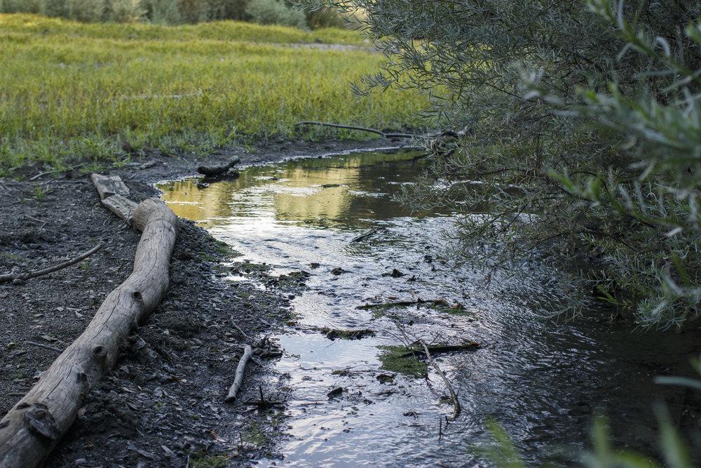 Reservoir-Sept10_8.jpg