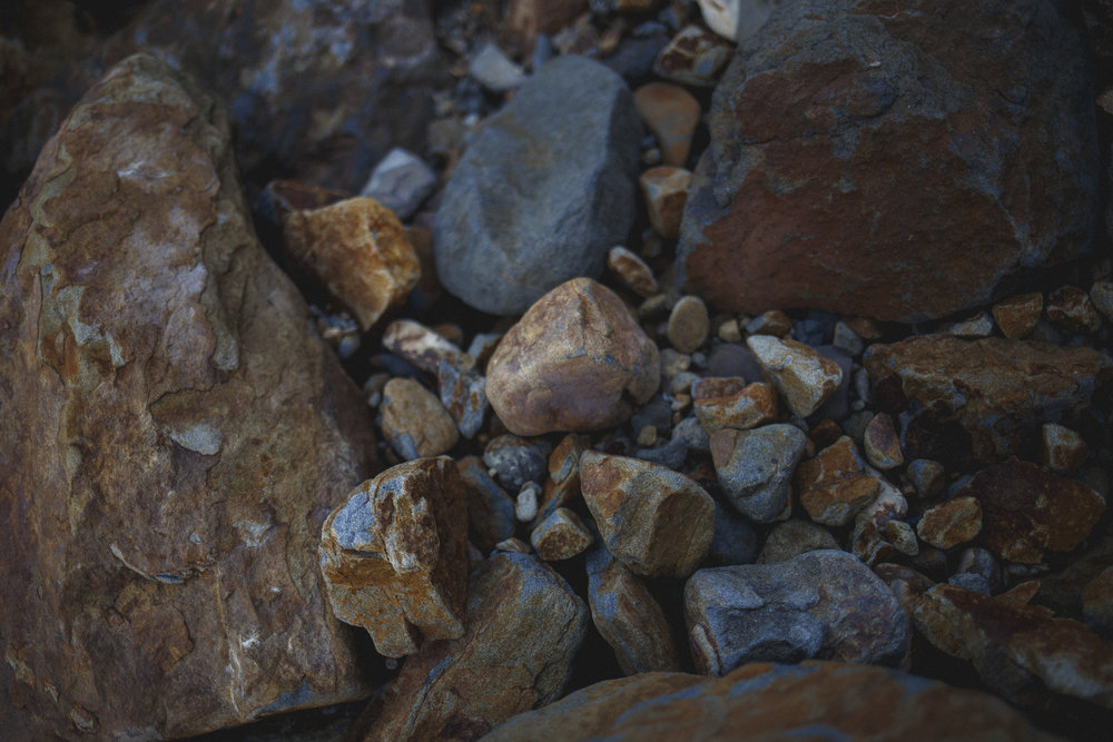 Cape-Kiwanda_71.jpg