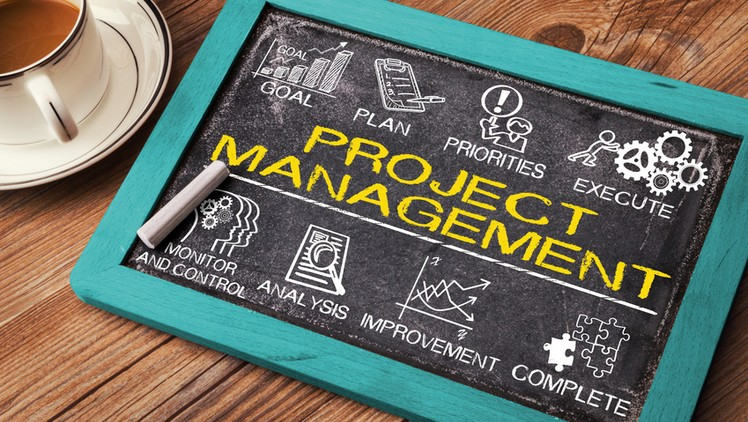 Five Success Factors in Project Management