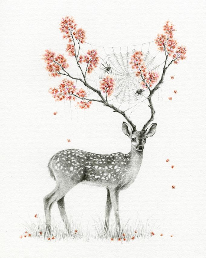 Deer Blossom