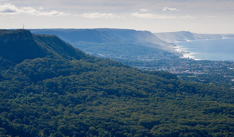 illawarra-landscape-geology-01.jpg