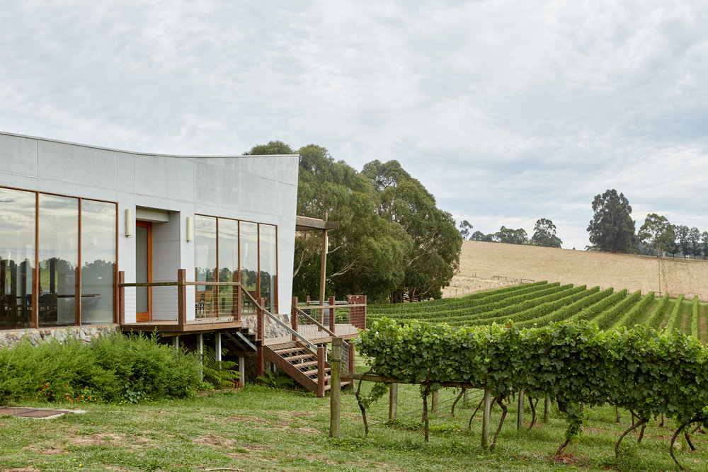 Welcome to Hogget Kitchen. - Nestled in the vines at Wild Dog Vineyard under 90 minutes from Melbourne.