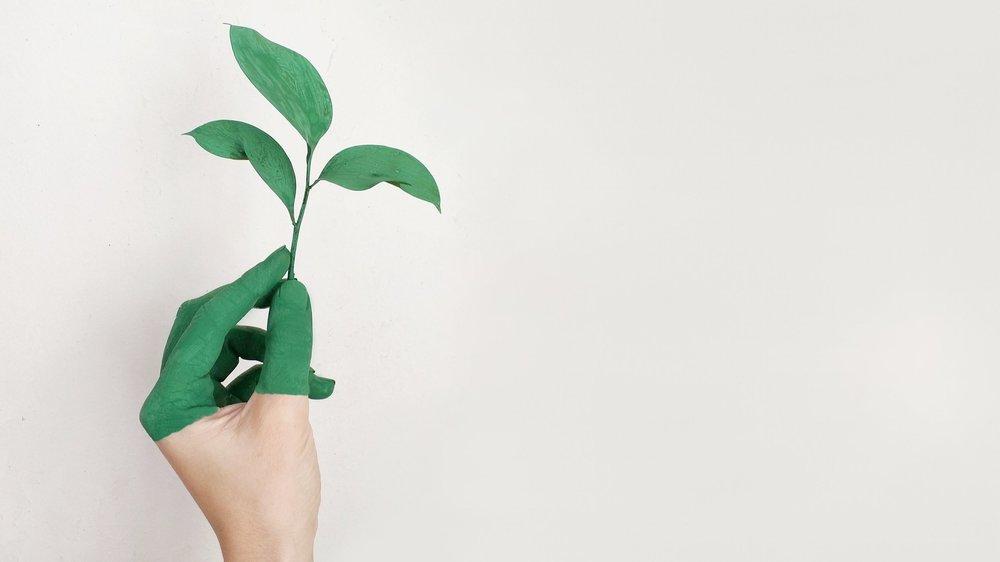 Hvad er HR-konsulenternes rolle i at skabe fremtidens organisation?