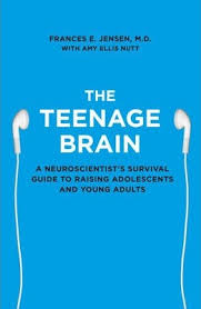 teenage brain book.jpg