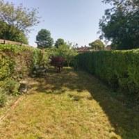 jean garden.jpg