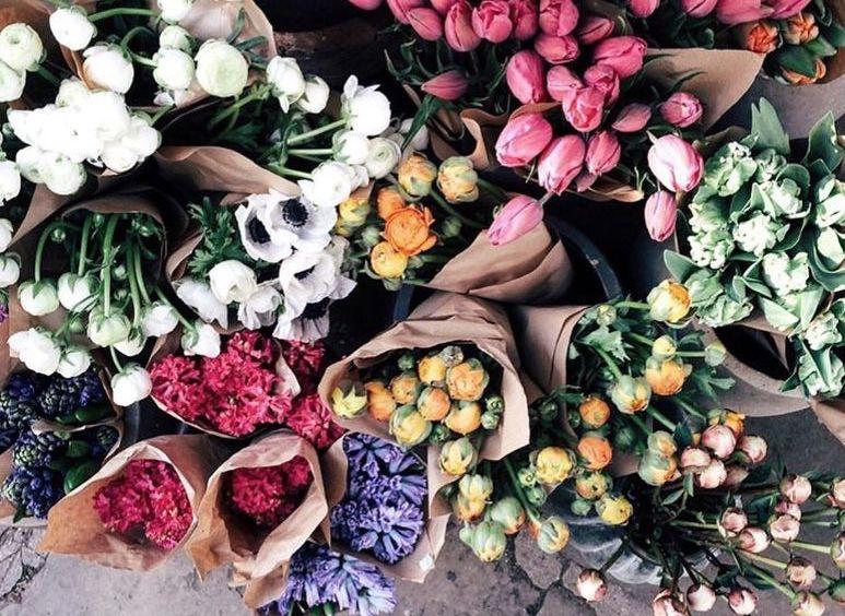 flower_bunches.jpg