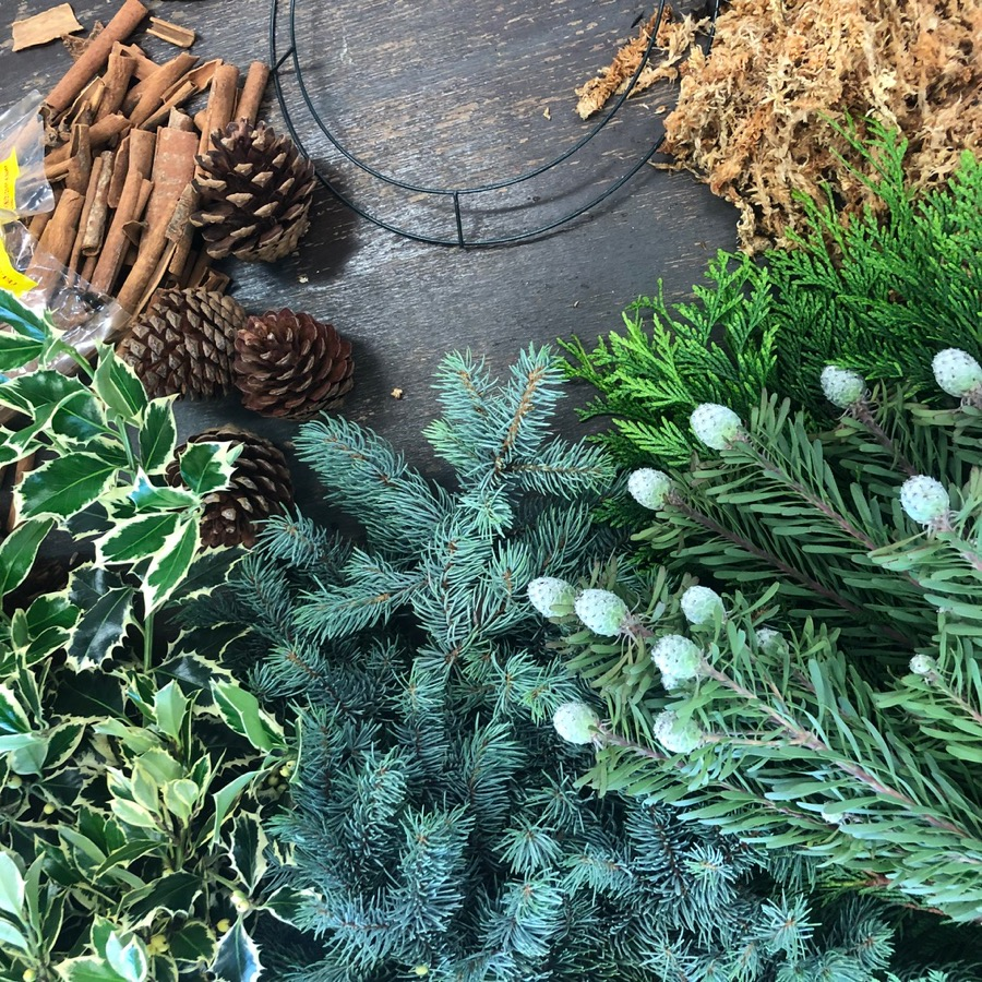 blue spruce, holly, available from Darwin florist, Beija Flor, in Coconut Grove