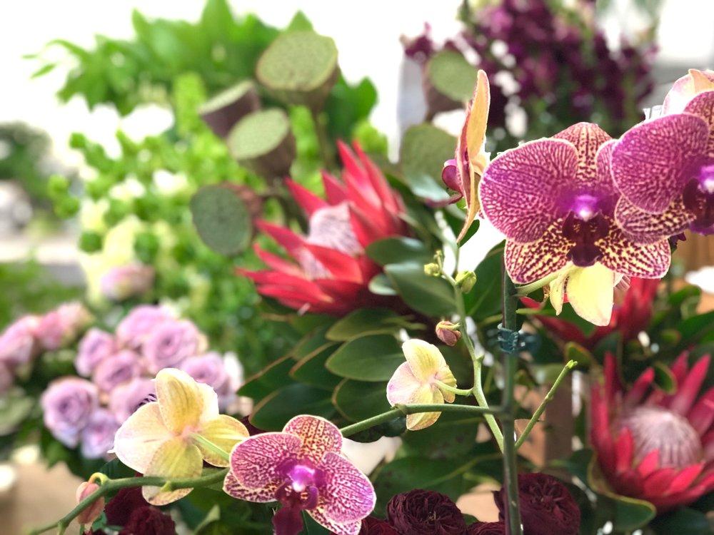 Beija Flor, store retail flower selection, fresh monsoon colour palette.