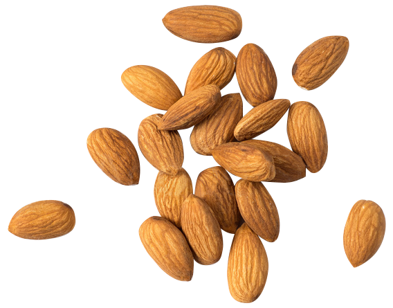 High in Fibre - The heart of every infusion round is the all-natural Almond. Our almonds give this treat a sensational crunch to balance the delicious Non-GMO Dark Chocolate coating. Almonds contain lots of fibre and helps in boosting our energy and immune system.