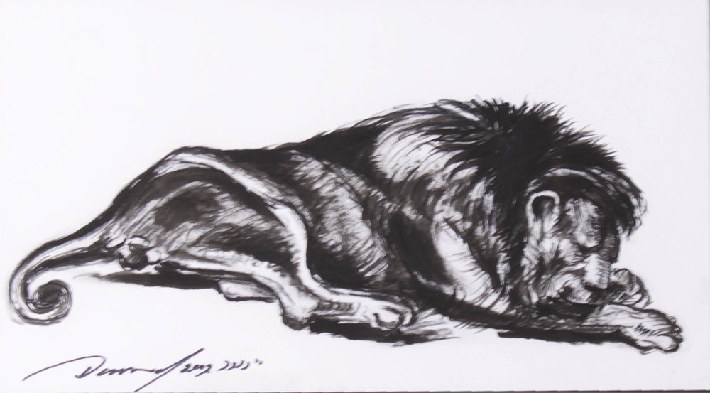 """Sleeping Lion II""    24"" x 16""    Ink on Paper"
