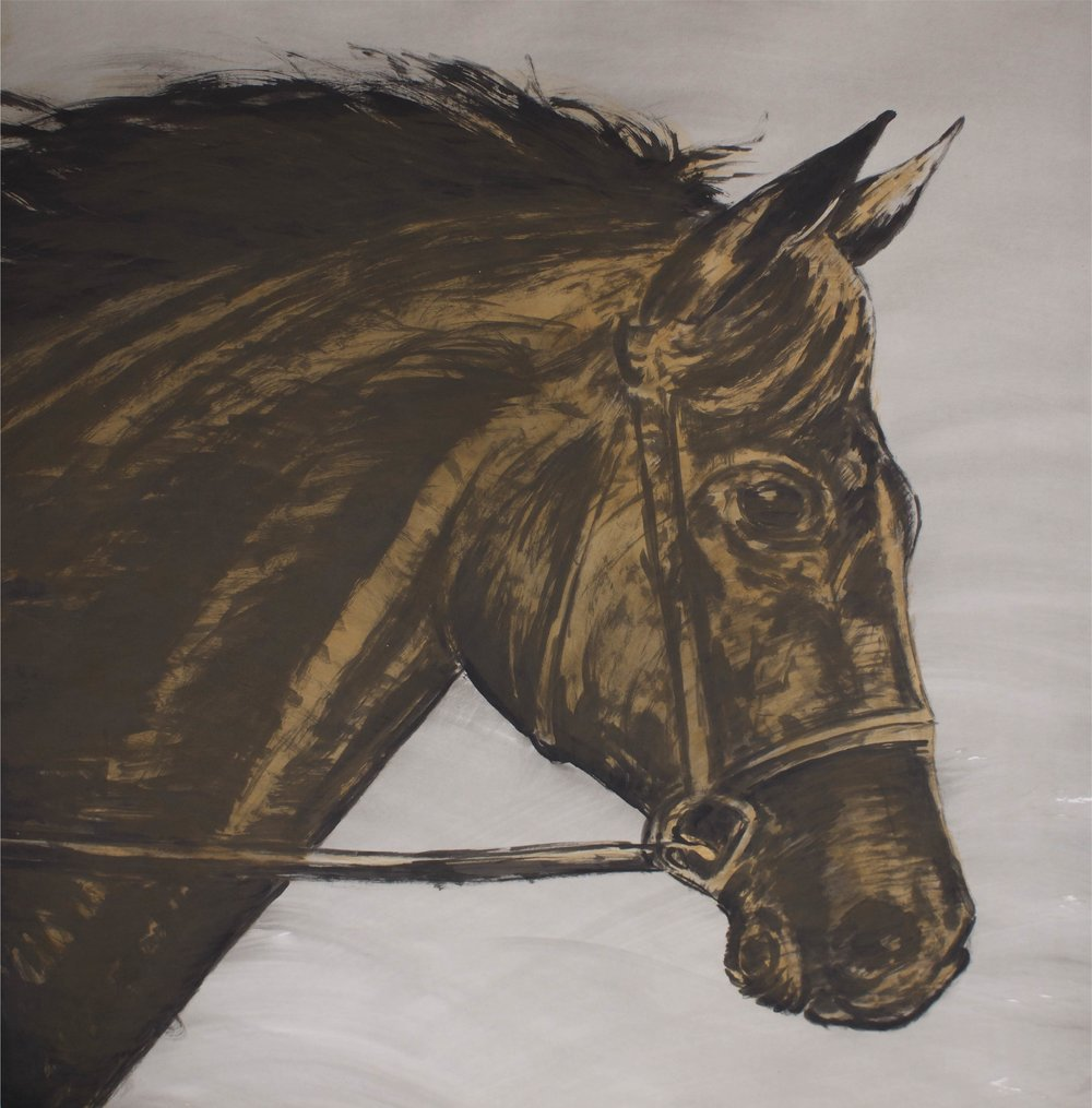 """Brown Horse on Grey""      50"" x 50""     Gouache on Paper"