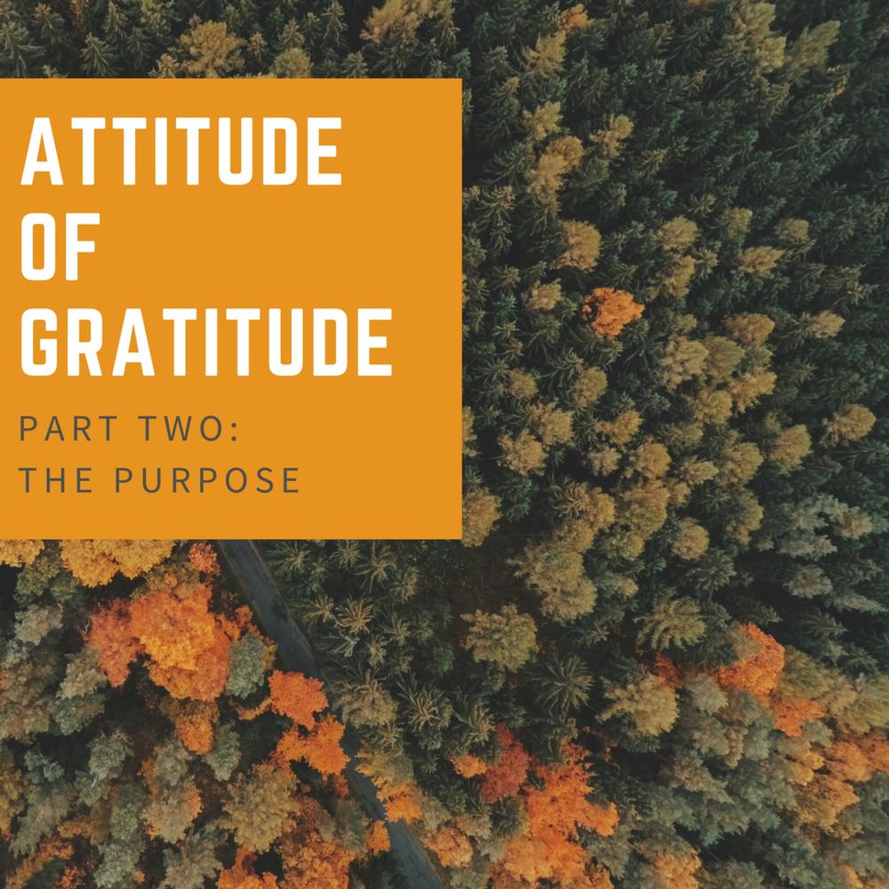 attitude of gratitude (1).png
