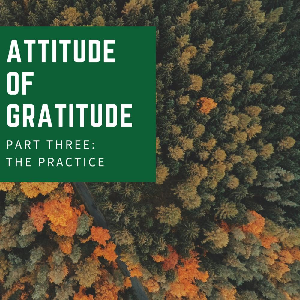 attitude of gratitude (2).png
