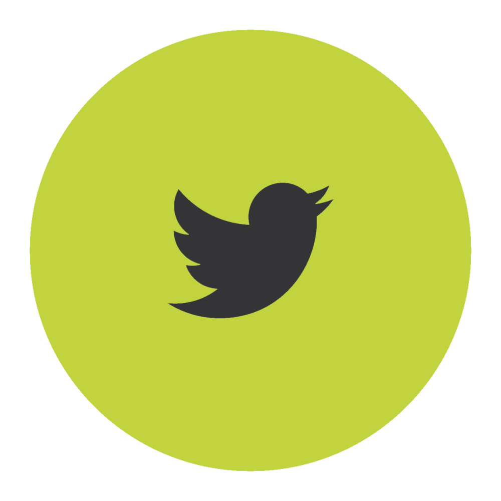 social-icon-round-02.png