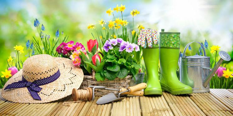 mettez-vous-au-jardinage-c-est-bon-pour-la-sante.jpeg