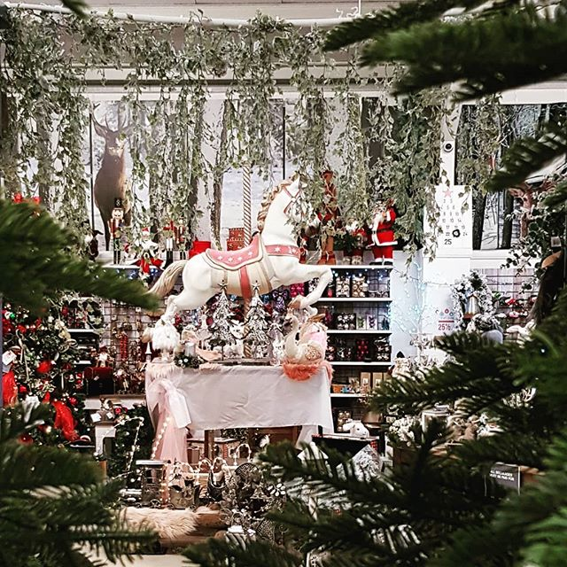 Open to 5.30pm today and 5pm tomorrow with a massive 25% off in our Home & Gift and  our Christmas Shop.