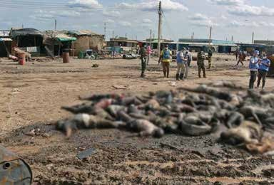 The massacre in Bentiu, Unity State