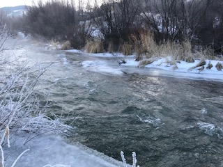 Border Ice on Flat Creek