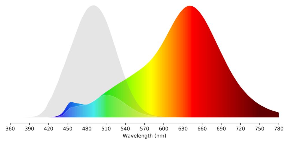Bedtime Bulb Spectrum
