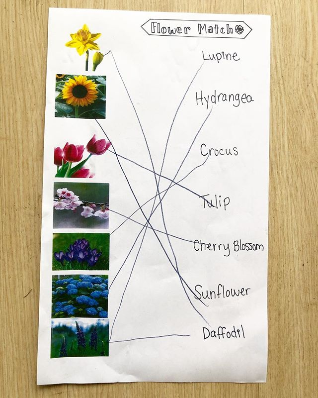 We also had some fun at Family Dinner with this matching flower game. We should have made it tougher! Each table of kids and family members worked together and came up with the answers with less discussion than our staff team did when we tested the game.