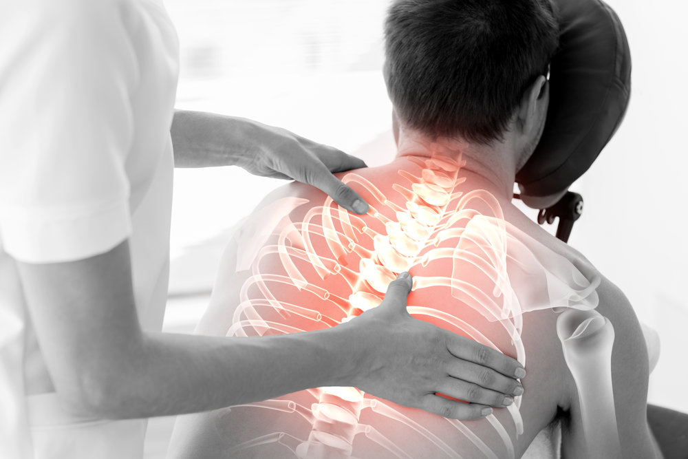 chiropractic spine.jpg