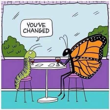 youve-changed-1.jpg