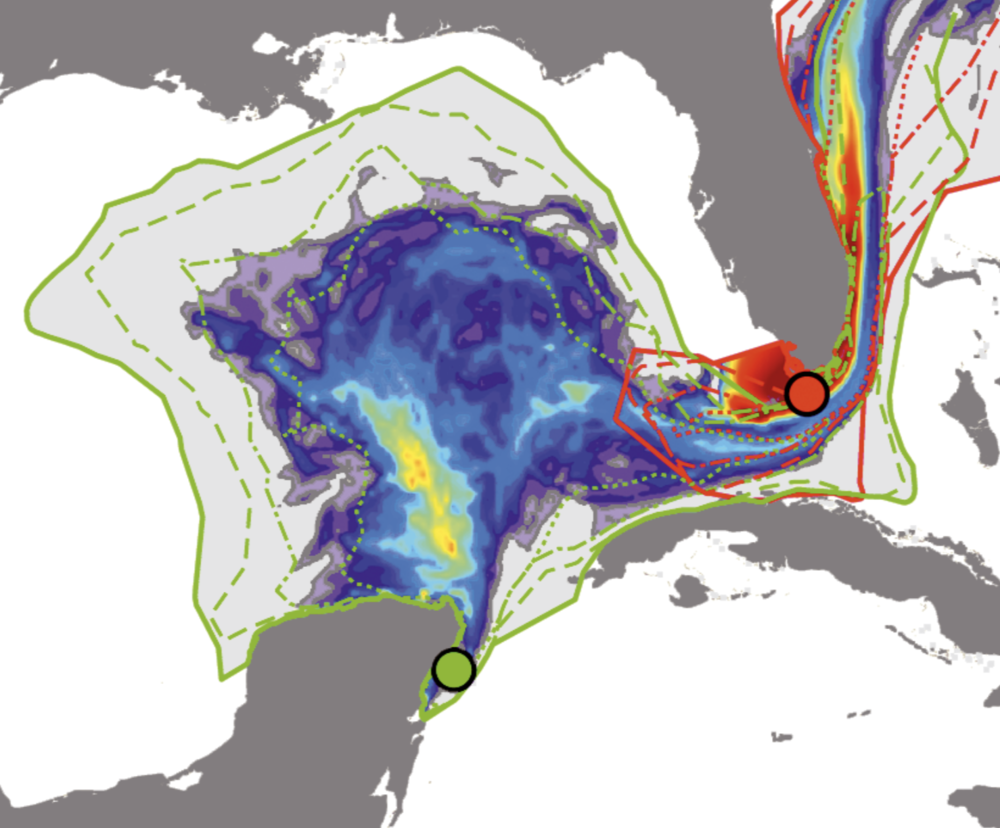 "Integrating seascape genetics and biophysical modeling to understand population connectivity is a complex challenge. ""Population genetics and biophysical modeling inform metapopulation connectivity of the Caribbean king crab Maguimithrax spinosissimus.""   2019"