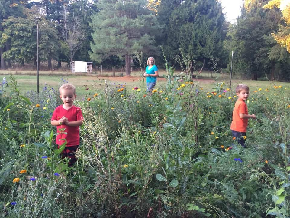 My boys...we're playing in the field of wild flowers. Don't judge me! I'm busy...weeds will have to wait.