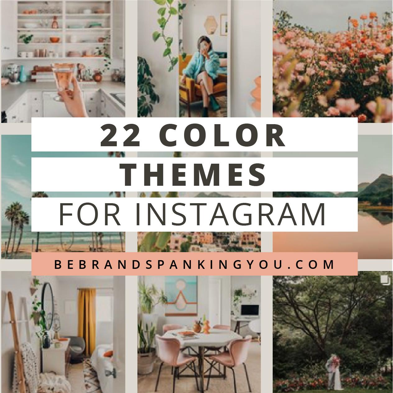 22 Instagram Color Theme Ideas Brand Spanking You