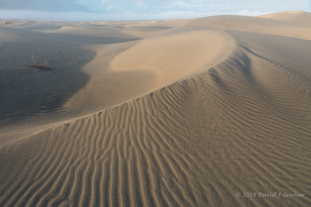 Lines - in the shape of the dunes, and in the sand as well........