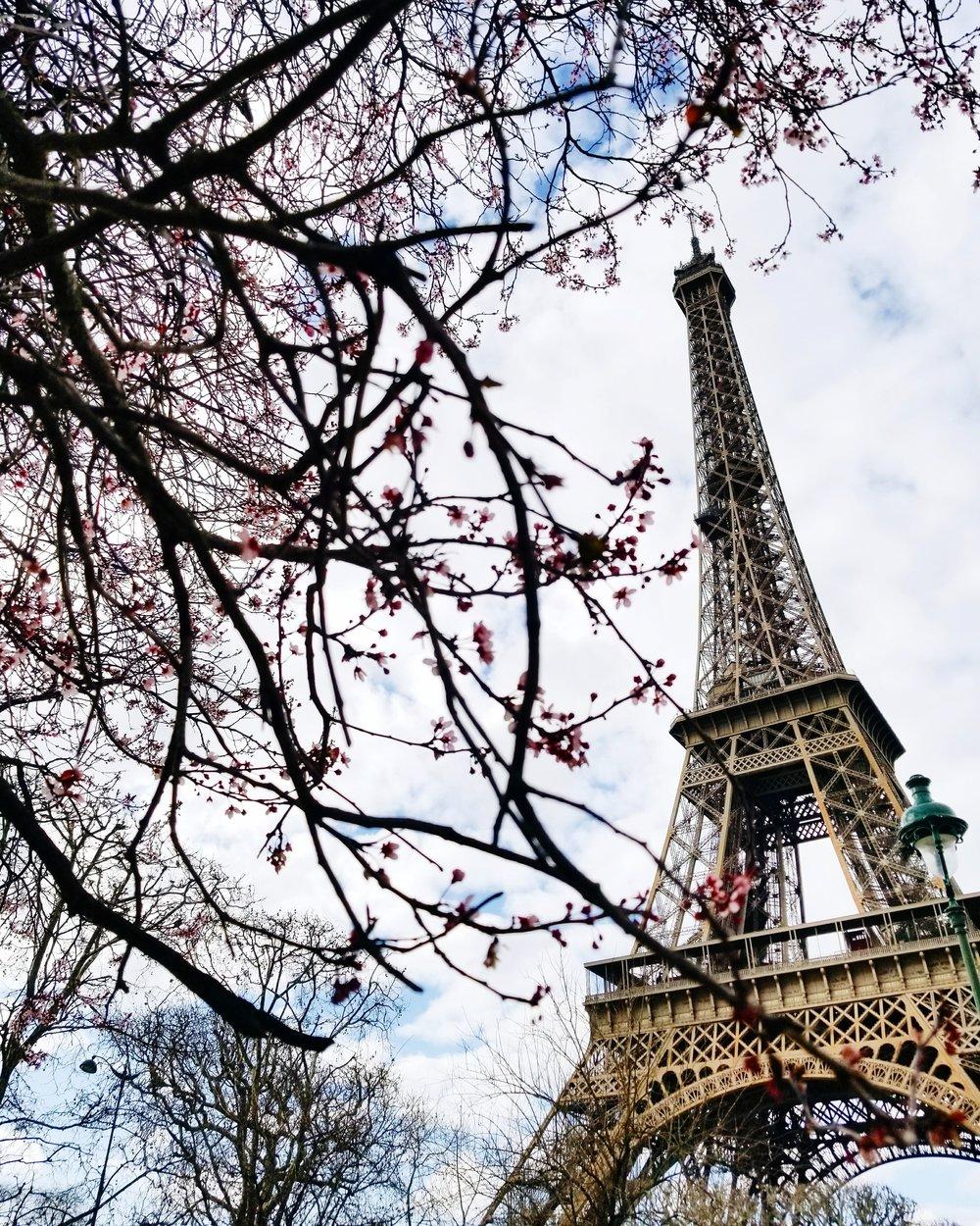 postcards-from-paris-eiffel-tower.jpg