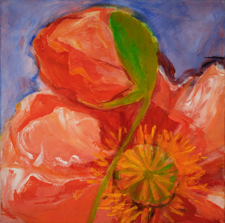Poppy, Acrylic on Canvas, 24 x 24