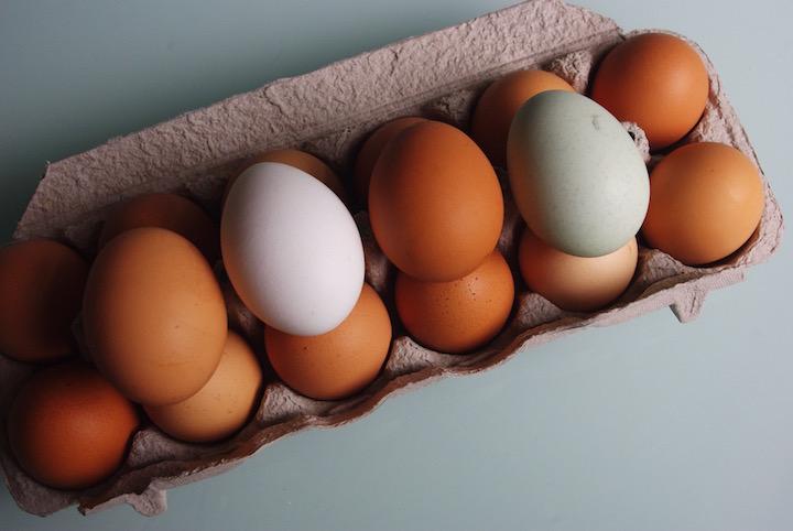 eggs(USE).jpg