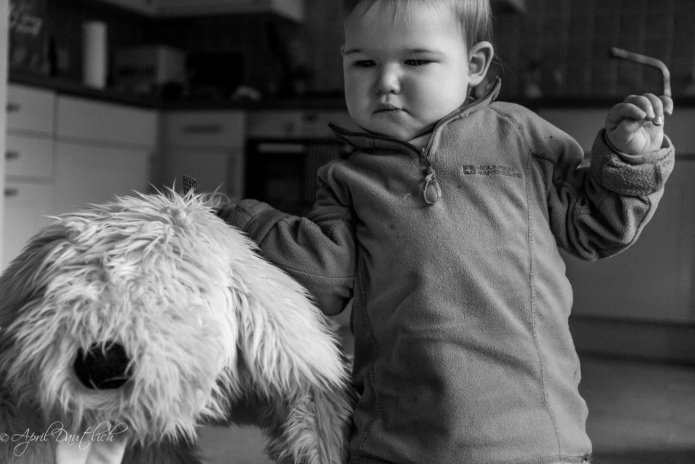 "Hazel carrying ""big dog"" stuffed animal around the flat."