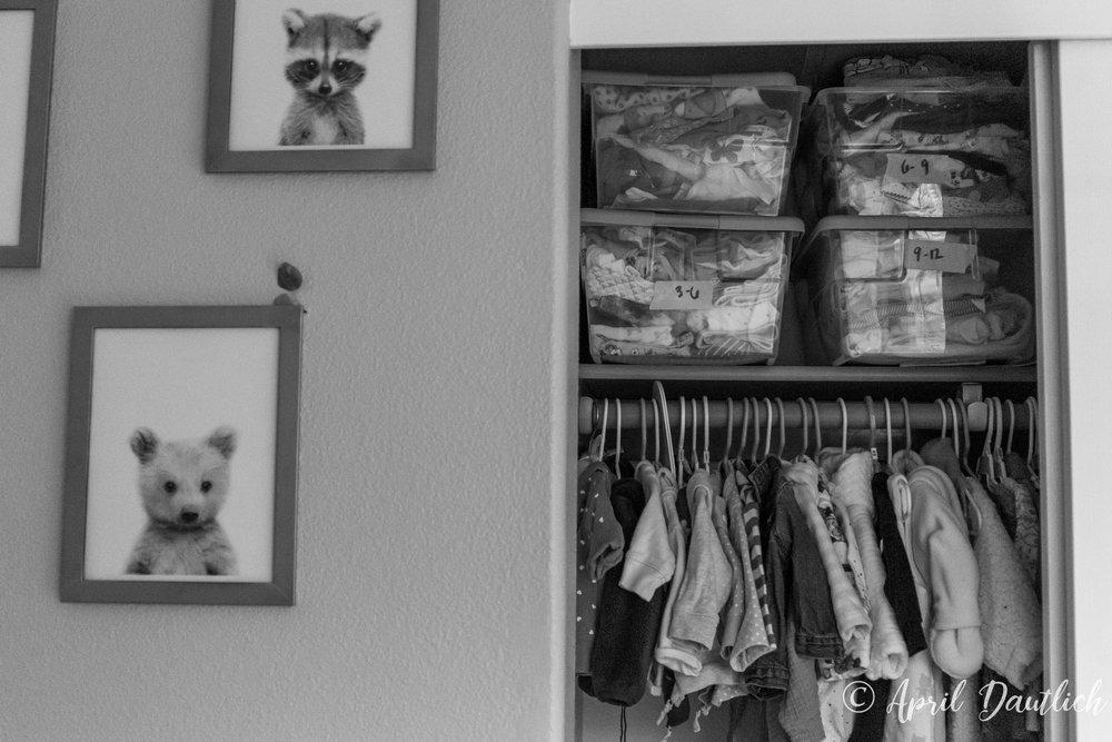 Closet of organized clothes