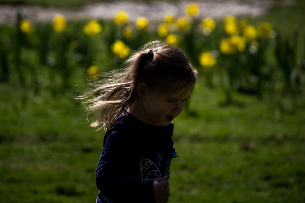 Hazel's beautiful wild hair flying behind her as she runs through daffodils in childhood bliss.