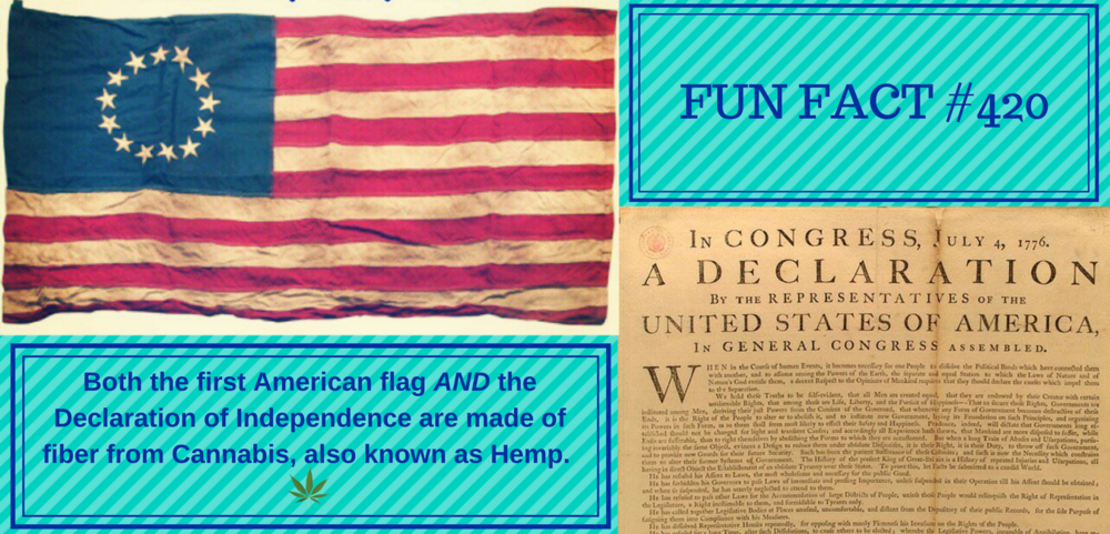 Betsy Ross made the first flag of the United States of America out of the finest, strongest fiber available, hemp fabric. It is also said that the finest laces of the olden days were always made of hemp in preference to any other fiber. Let's not forget also, the Declaration of Independence was drafted on Hemp paper by our founding fathers and farmers, Thomas Jefferson and George Washington.